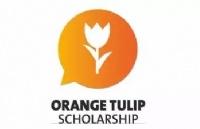 荷兰留学 | 2021-2022橙色郁金香奖学金即将开放申请