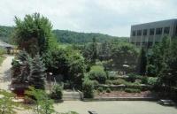 尼亚加拉学院怎么样?几个理由就能记住这所大学!