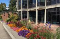 疫情下,俄亥俄卫斯理大学宣布取消18个专业,此举将节省400万美元....