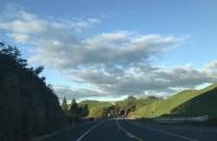 高中新西兰留学一年费用