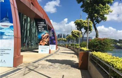 新加坡再次放宽防疫限制,旅游团可20人参与,图书馆开放堂阅