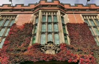 长避短,及早规划,及早申请,拿到一份英国谢菲尔德大学offer