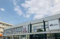 在法国葡萄酒圣地读公立大学是什么样的体验?