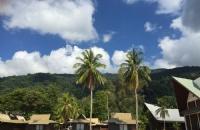 马来西亚留学热门专业及前景分析