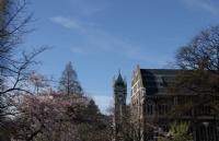 新西兰的哪些城市适合国际生留学?