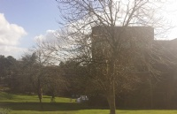 英政府今日宣布:大学要全改网课,校内开启大规模检测!