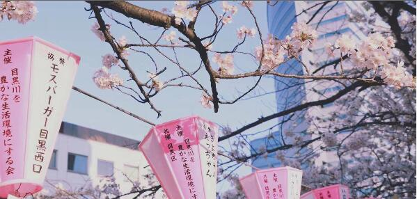 """2020年日本""""最想居住地区""""榜单,第一名还是这里!"""