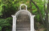 韩国留学 | 未来想申请研究生,该如何提升自己的实力?