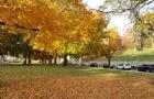 U.S. News公布11所最爱录取国际生的美国大学,录取率高达99%!