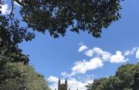 西澳大学有什么值得称赞的地方?