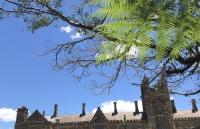 申请南十字星大学本科生需要做哪些准备?