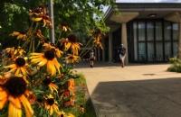 2021美国东北大学最新qs世界排名