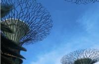 不惧疫情影响,新加坡金融业今年上半年创造1900份职位