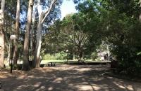 申请西悉尼大学本科生需要做哪些准备?