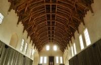 东安格利亚大学有哪些强势或者特色专业?