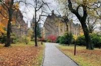 伦敦城市大学最强申请攻略!