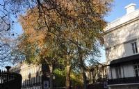 想申请英国皇家兽医学院研究生,需要做哪些准备?