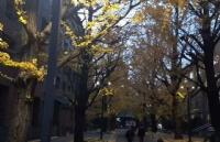 日本东北大学:鲁迅先生母校,实力不再允许低调