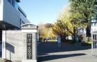 一步一个脚印,王同学最终收获横滨市立大学录取通知书