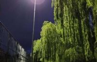 莫道克大学有什么值得称赞的地方?