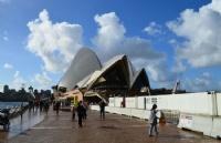 新州州长宣布:悉尼跨年烟花照常举行!