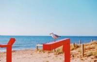 每天学习几句澳式英语,帮你更好的在澳洲生活!