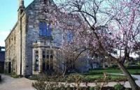 乐卓博大学有哪些强势或者特色专业?