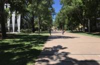 其实去新南威尔士大学一点也不难