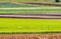 助推农业繁荣!南昆士兰大学在可持续发展农业的探索道路上从未止步!