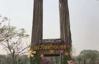 泰国留学|最具有就业优势的泰国留学专业