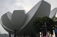 新加坡科廷大学相对好申请的专业有哪些?