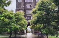 康奈尔大学的淘汰率高吗?