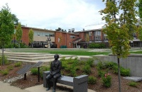 劳里埃大学什么专业比较强势?