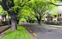 新西兰惠灵顿维多利亚大学 - 光学磁传感器