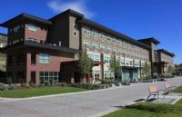 加国留学生活 | 学生工签类型和时长政策,及疫情下工签问题解析