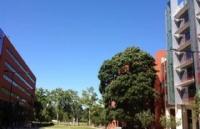 格里菲斯大学本科申请条件有哪些?