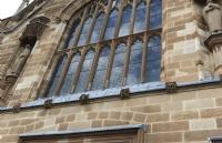 在中央昆士兰大学读书是怎样的体验?