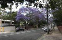 澳大利亚联邦大学研究生入学门槛如何?