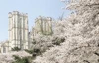 韩国名校之仁荷大学