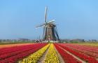 看看2022年荷兰留学的最佳申请时间吧