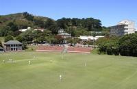 新西兰大学设立了哪些新专业?