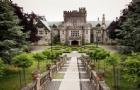 留学生去加拿大留学期间可以转专业?