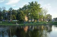 在沟通中找出了学生的人生方向,成功收获荷兰乌得勒支大学offer!