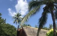 泰国留学回来好就业吗?留学回国毕业生有哪些优势?