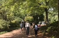 丰富实践活动,清晰规划成功助力拿下圣路易斯华盛顿大学录取