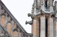 选择在查尔斯达尔文大学是什么感受?