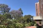 在悉尼租房,哪些区域既方便又便宜?如何选择房屋类型?