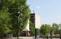 申请莱姆顿学院,录取官最看重什么?