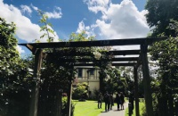 新西兰梅西大学最新招生简章