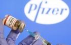澳洲450万剂辉瑞将提前到货!本月内全澳增供至每周100万剂!